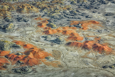 Bisti Wilderness, New Mexico Fruitland Formation, Upper Cretaceous