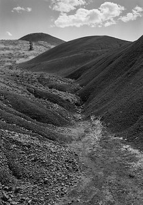 Exploring John Day Fossil Beds National Monument