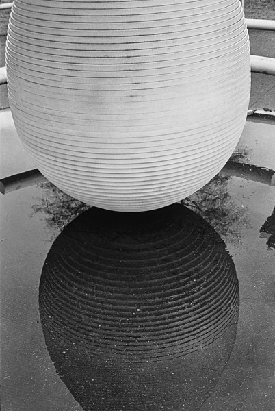 Oval Reflection #1
