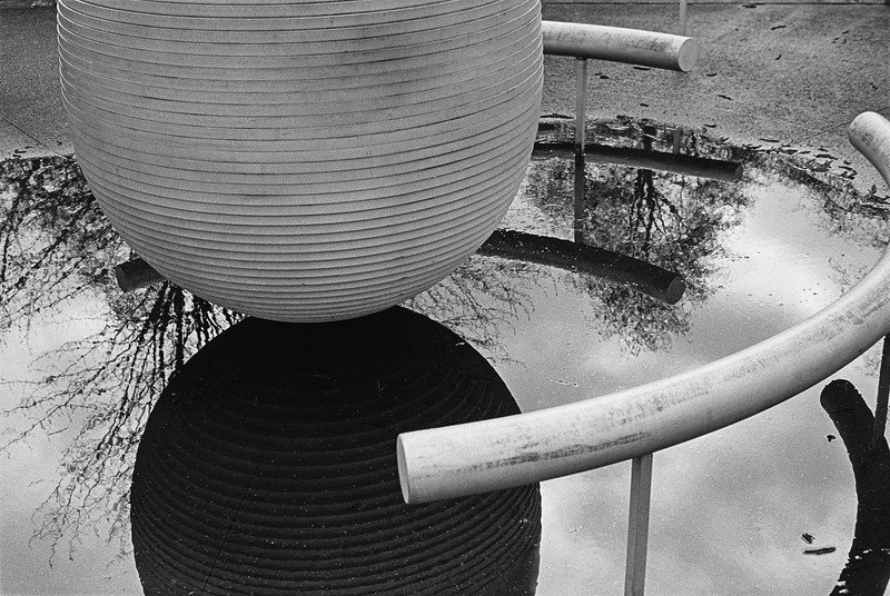 Oval Reflection #2