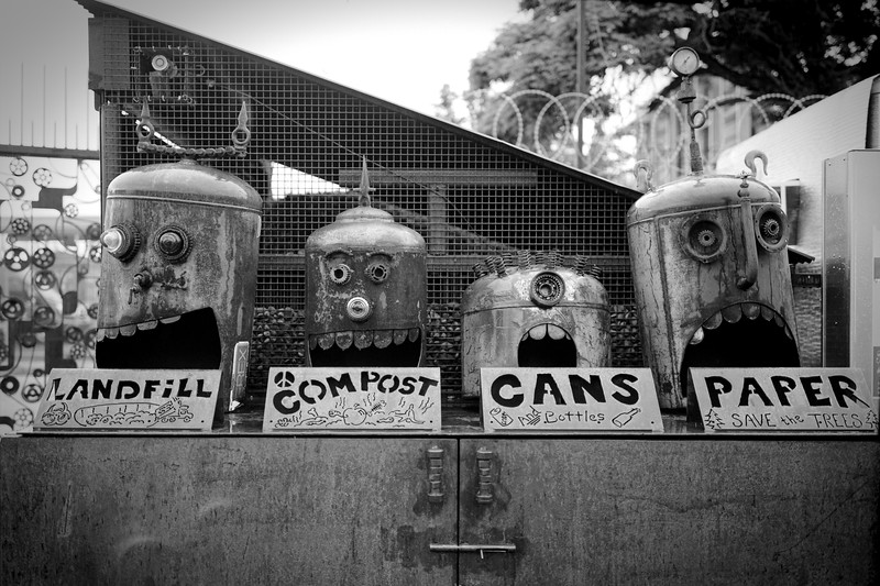 Landfill, Compost, Cans, and Paper