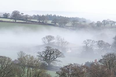 Devon Fog XXVII