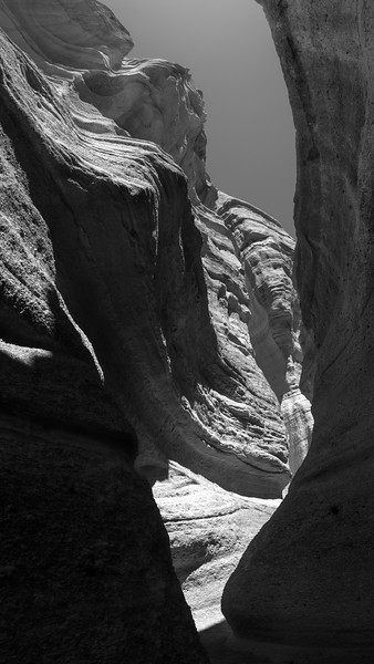 PS Tent Rocks Pine Curves