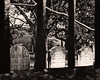 20130503_KW_FL_CharlestonSC_Home_Graveyard