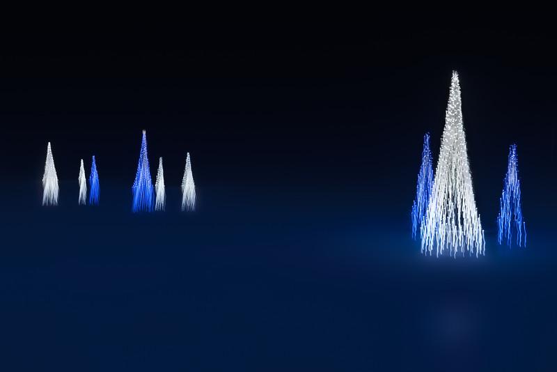 20191228KW_Christmas_Light_Trees_in_Fog