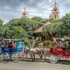 Horse Carts of Granada