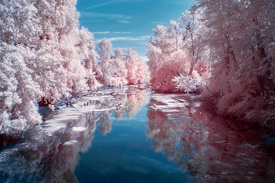 The Land Of Cotton Candy