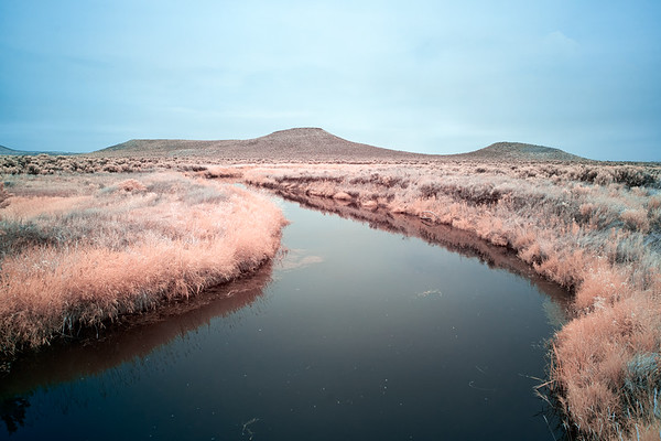 Waterway In Malheur National Wildlife Refuge - Oregon