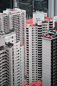 Skyscraper Apartment Buildings #3 - Mid-level, Hong Kong