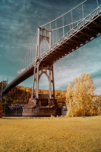 Looking Up At The St. Johns Bridge From Cathedral Park - Portland, Oregon