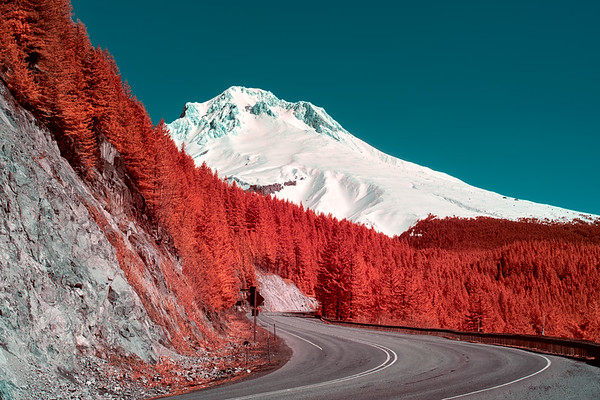 Empty road to Mt.Hood - Oregon
