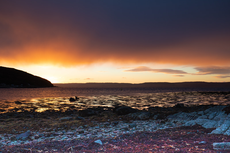 Stunning sunset in Lochranza this evening, lots of oranges and yellows with more to come in the next few days.