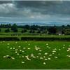 Ireland, County Offala Countryside 1 September 2017