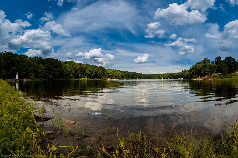 The Far Edge of Goss Pond