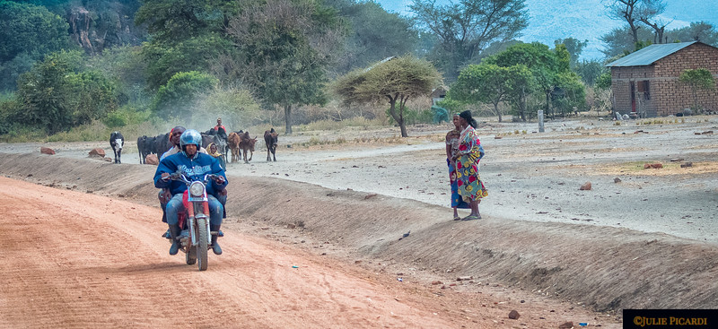 Village Road Scene