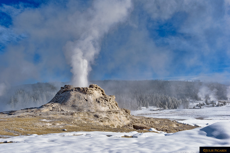 Castle Geyser in Upper Geyser Basin