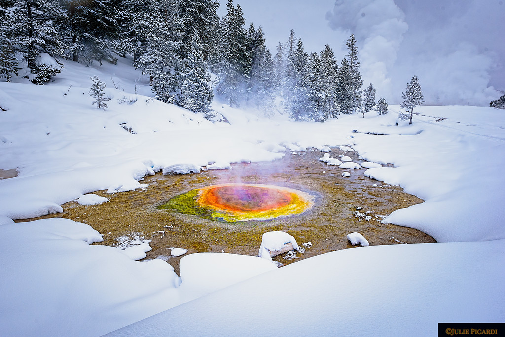 The trail to the right led us by many paint pots near Old Faithful. Winter may be chilly, but the landscape is magical.