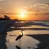 """Morning Light on the Gulf"""