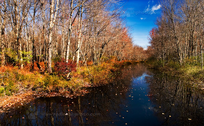 """Autumn Stream"""