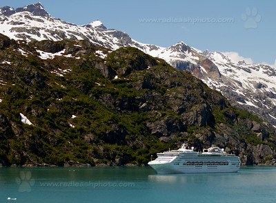 """Cruising Glacier Bay"""