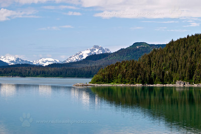 """Stillness on Glacier Bay"""