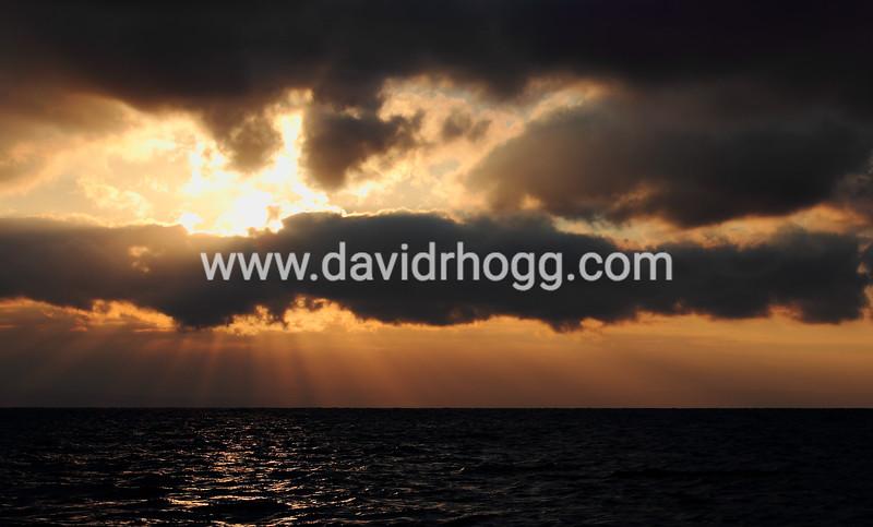 davidrhogg-20120203_29