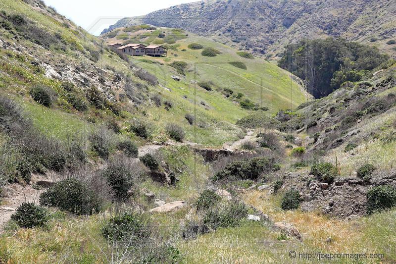 Cavern Point Trail, Santa Cruz Island