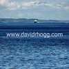 davidrhogg-20150807_64