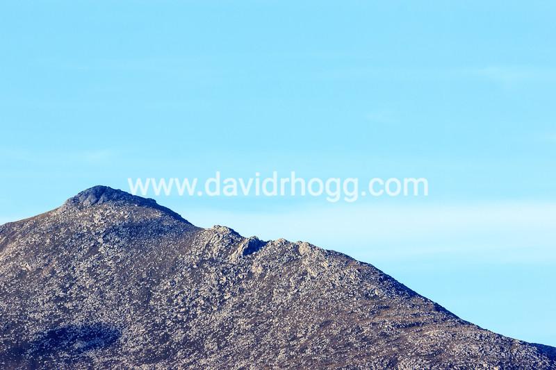 davidrhogg-20140826_56