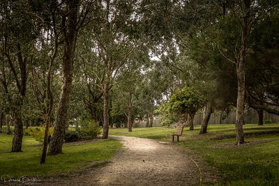Walking Trail - Greythorn Park