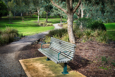 Graythorne Park Path (2)