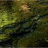 Rensselearville  NY June 2015 Riffles in Lake Creek