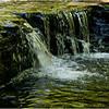 Rensselearville  NY June 2015 Falls in Lake Creek 2