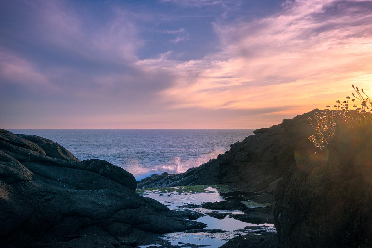 Oregon Coast Sunset #6EE406