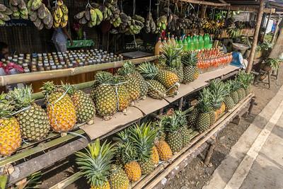 Fruit and Vinegar road stand - Passi City, Iloilo
