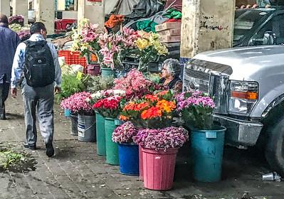 24 Hours Flower Market