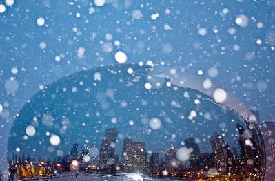 Snow Globe Bean - February 11, 2008