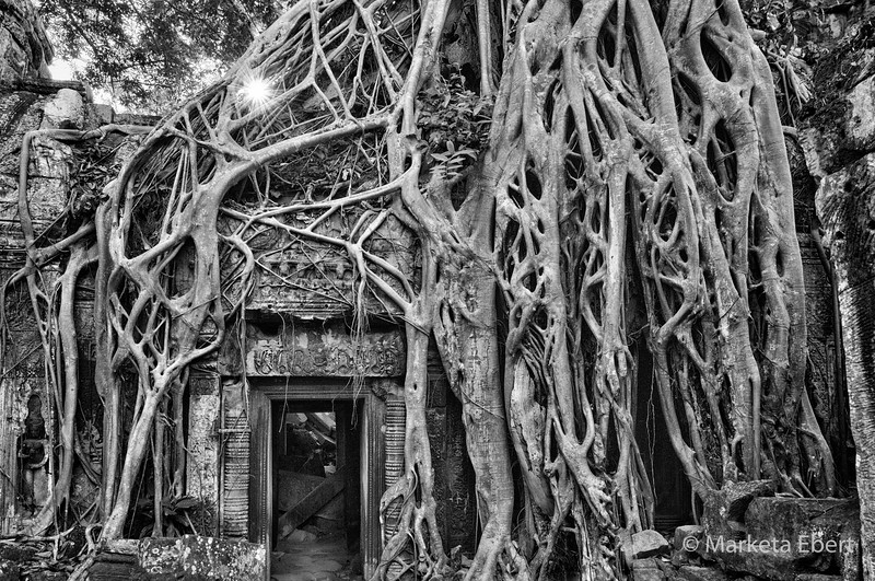 Sunrise at Ta Prohm