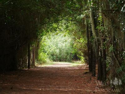 Greenbrook Adventure Park