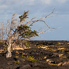 Big Island Hawaii<br /> Almost dead from volcanic activity
