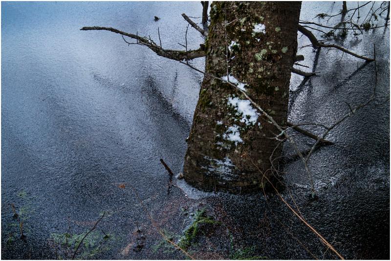 Adirondacks Lake Abenakee 5 December 2016