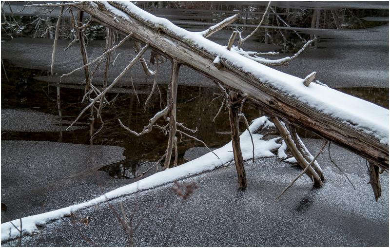 Adirondacks Saranac Lake Pond 1 December 2016