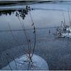 Adirondacks Lake Abenakee Puddle Frozen Surface 4 December 2016