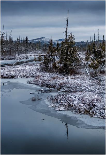 Adirondacks Saranac Lake Tributary 2 December 2016