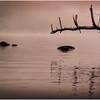 Adirondacks Chateaugay Lake Before Sunrise 3 July 2016