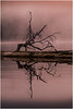 Adirondacks Chateaugay Lake Before Sunrise 15 July 2016