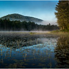 Adirondacks Lake Rondaxe 1 July 2016