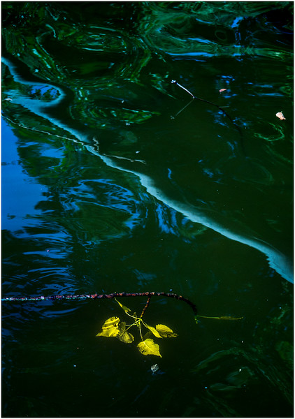 Rotterdam NY Maybee Farm Mohawk River Reflection 1 August 2016