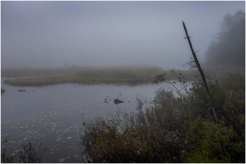 Adirondacks Cary Lake Morning Mist 1 September 2017