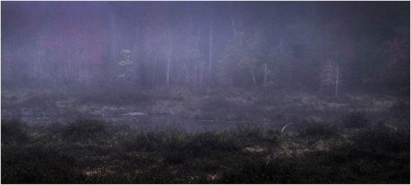 Adirondacks Cary Lake Morning Mist 80 September 2017